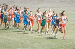 Seabury's Hailey Grossman expected to lead the pack at HHSAA