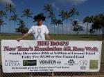 big dog banner